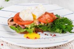 Ovo escalfado com tomates, os cogumelos e as folhas grelhados da salada Imagem de Stock Royalty Free