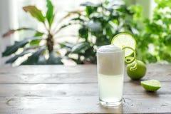 Ovo Gin Fizz Cocktail imagem de stock