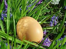 Ovo na grama verde e nas flores Fotografia de Stock Royalty Free