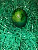 Ovo verde Imagens de Stock
