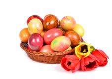 Ovos. Foto de Stock Royalty Free