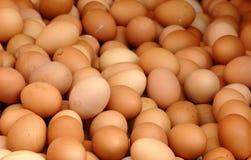 Ovos foto de stock