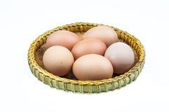 Ovos Fotografia de Stock