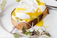 Ovos ar livre caçados gourmet no sourdough fotografia de stock