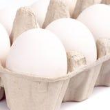 Ovos brancos fotos de stock royalty free