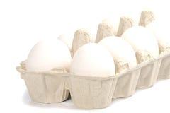 Ovos brancos fotos de stock
