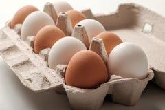 Ovos brancos e marrons da galinha fotos de stock royalty free