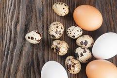 Ovos brancos e marrons da galinha Fotografia de Stock Royalty Free