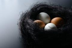 Ovos brancos e marrons no ninho do sisal no fundo preto Fotografia de Stock Royalty Free
