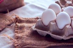 Ovos brancos em um pacote Fotos de Stock