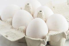 Ovos brancos em um pacote a isolar-se Fotografia de Stock Royalty Free