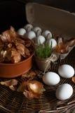 Ovos brancos em uma caixa com uma casca amarela da cebola em um prato em uma bandeja de vime preparada colorindo na tintura orgâ fotos de stock royalty free
