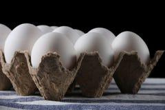 Ovos brancos embalados no fim escuro do fundo acima imagens de stock