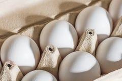 Ovos brancos frescos da galinha em uma bandeja fotografia de stock royalty free