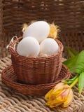 Ovos brancos na cesta marrom pequena com tulips Fotografia de Stock