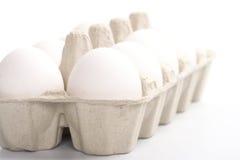 Ovos brancos na embalagem fotografia de stock