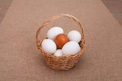 Ovos brancos para a Páscoa Imagens de Stock