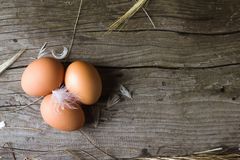 Ovos caseiros da galinha Fotos de Stock Royalty Free