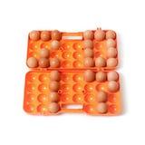 2017 ovos colocados da galinha no recipiente Foto de Stock Royalty Free