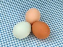 Ovos coloridos da galinha em uma toalha de mesa quadriculado azul fotografia de stock