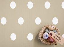 Ovos coloridos em um ninho pequeno Imagens de Stock Royalty Free