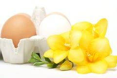 Ovos com flor foto de stock