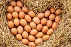 ovos Coração-dados forma colocados na palha Fotos de Stock Royalty Free