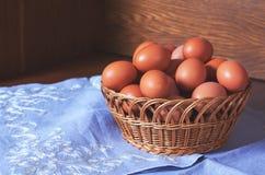 Ovos crus da galinha Foto de Stock