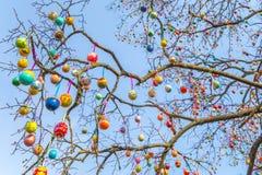 Ovos da árvore da Páscoa na luz solar fotografia de stock