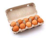 Ovos da galinha Imagens de Stock