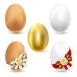 Ovos da galinha Imagem de Stock Royalty Free