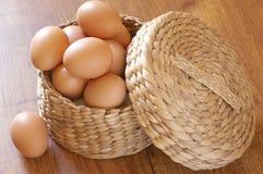 Ovos da galinha de Brown fotos de stock royalty free