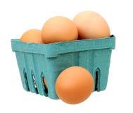 Ovos da galinha de Brown Imagens de Stock