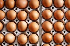 Ovos da galinha de Brown Foto de Stock