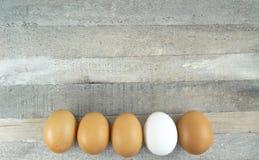 Ovos da galinha de Brown e um um branco no fundo de madeira imagens de stock royalty free