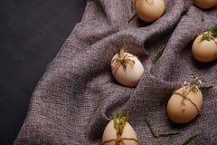 Ovos da galinha e de codorniz com elementos decorativos no fundo preto Fotos de Stock Royalty Free