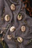 Ovos da galinha e de codorniz com elementos decorativos no fundo preto Imagem de Stock