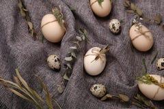 Ovos da galinha e de codorniz com elementos decorativos no fundo preto Foto de Stock