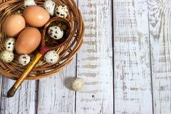 Ovos da galinha e de codorniz com uma colher de madeira Foto de Stock