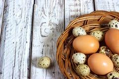 Ovos da galinha e de codorniz com uma colher de madeira Imagens de Stock Royalty Free