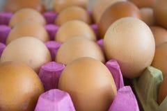 Ovos da galinha e de codorniz em um fundo rústico imagem de stock royalty free