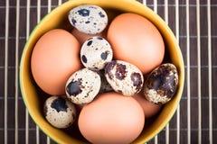 Ovos da galinha e ovos de codorniz Foto de Stock Royalty Free