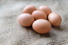 Ovos da galinha/galinha no pano de saco Imagens de Stock Royalty Free