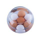 Ovos da galinha na água foto de stock
