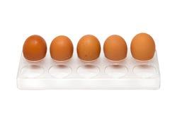 5 ovos da galinha na bandeja do ovo Foto de Stock