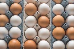 Ovos da galinha na bandeja do ovo da pilha Imagens de Stock Royalty Free