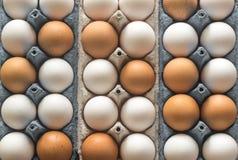 Ovos da galinha na bandeja do ovo da pilha Imagem de Stock