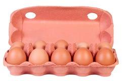Ovos da galinha na caixa da caixa isolada. Imagens de Stock
