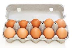 Ovos da galinha na caixa do ovo da polpa Fotografia de Stock