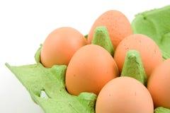 Ovos da galinha na caixa verde Fotos de Stock Royalty Free